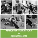 Ashburton Iyengar Yoga with Chris Willis