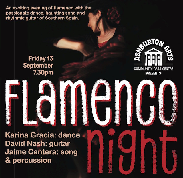 Flamenco Night Noche Flamenca