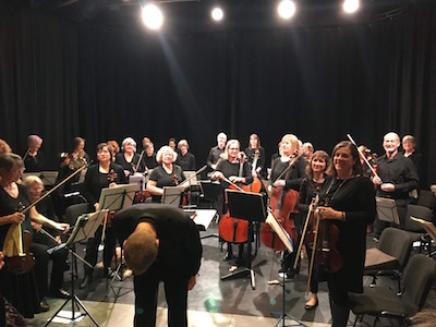 Dartmouth Orchestra Ashburton Arts